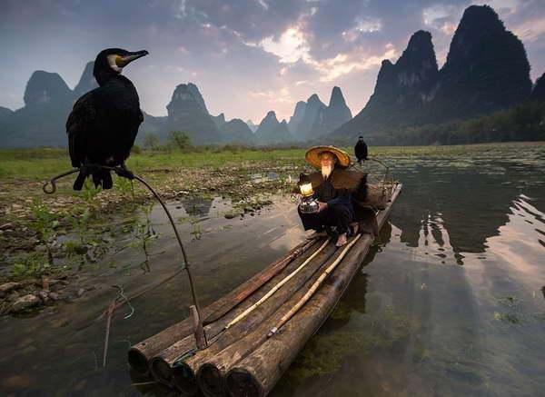 cormorant fishing li river Yangshuo Village Inn